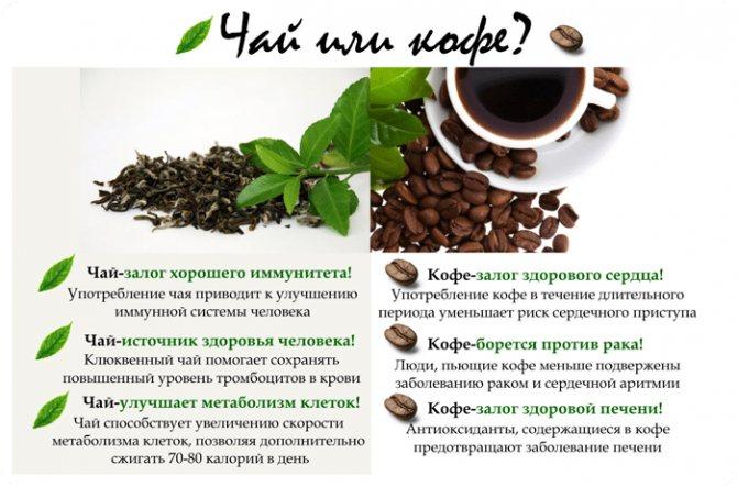 Почему кофе полезнее чая: 5 пунктов