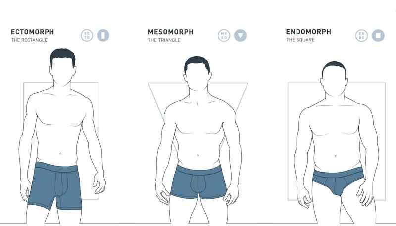 Питание для эндоморфа: рацион для похудения и набора мышечной массы