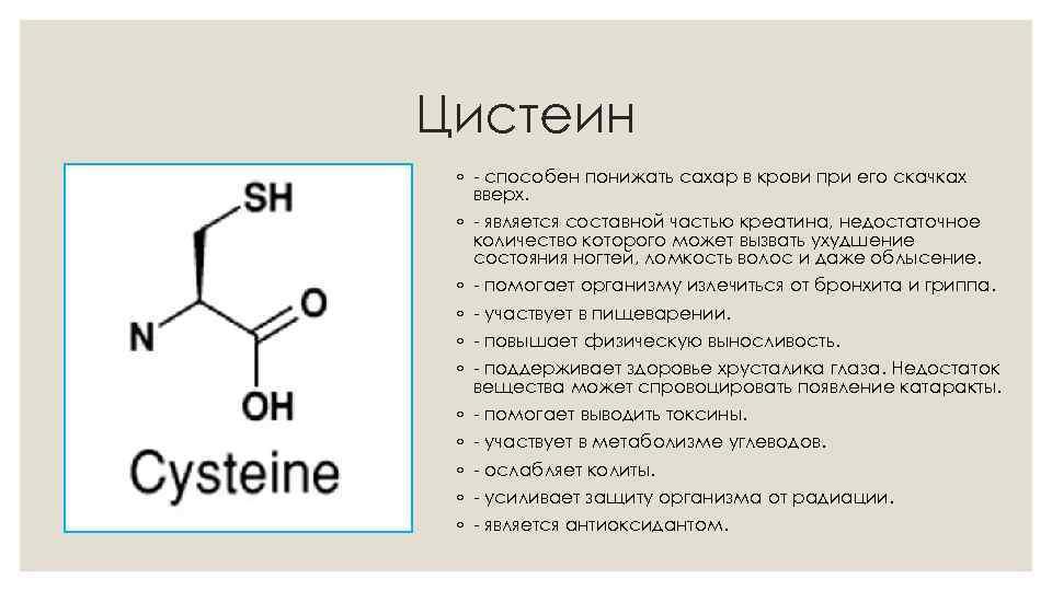 Аминокислоты: ваш ключ к успеху в бодибилдинге - dailyfit