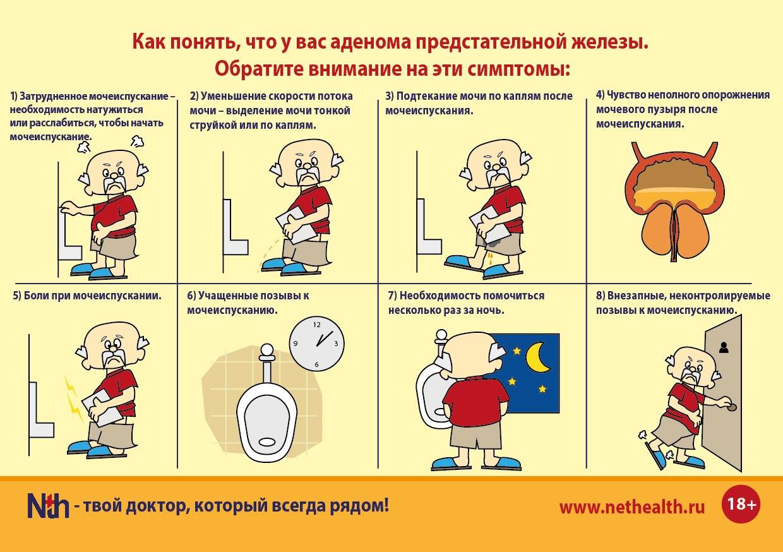 Увеличена простата: что делать, причины, признаки и симптомы, методы лечения, отзывы