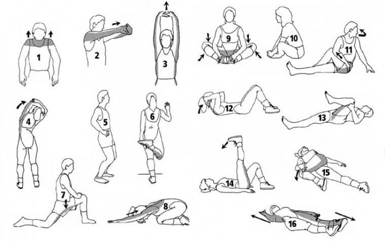 Растяжка для мужчин: комплекс упражнений на все тело в домашних условиях