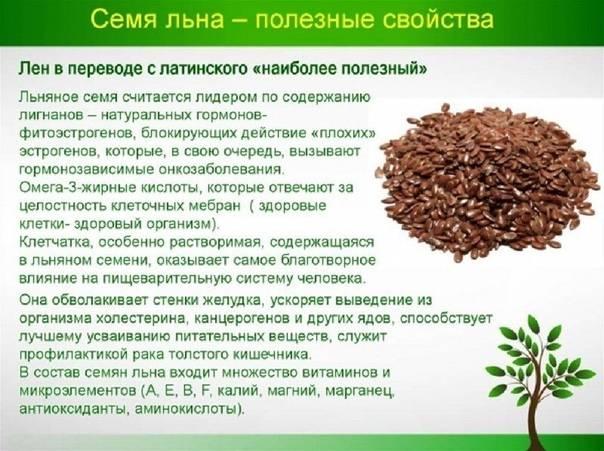 Семена льна: польза и вред, рецепты народной медицины