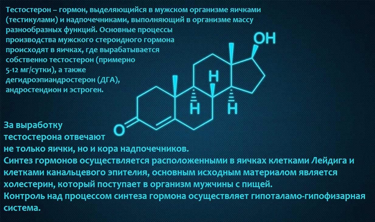 Продукты снижающие тестостерон у мужчин