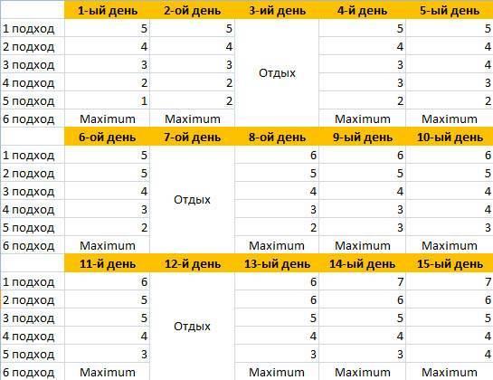 Лучшая программа тренировок 5 раз в неделю на массу в домашних условиях | для девушек и мужчин