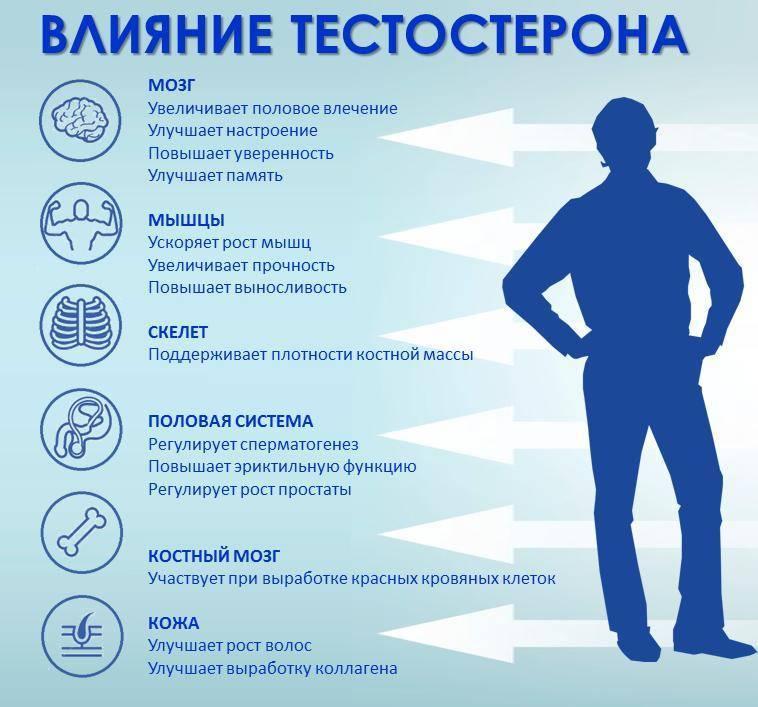 Причины пониженного тестостерона у мужчин