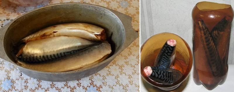 Скумбрия в бутылке — рецепт настоящего деликатеса из простой рыбы