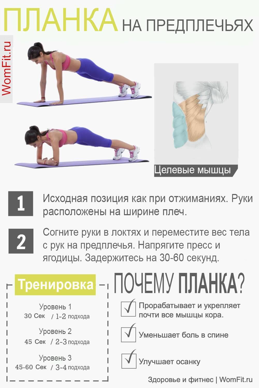 Упражнение «планка» для мышц пресса и как держать ее правильно