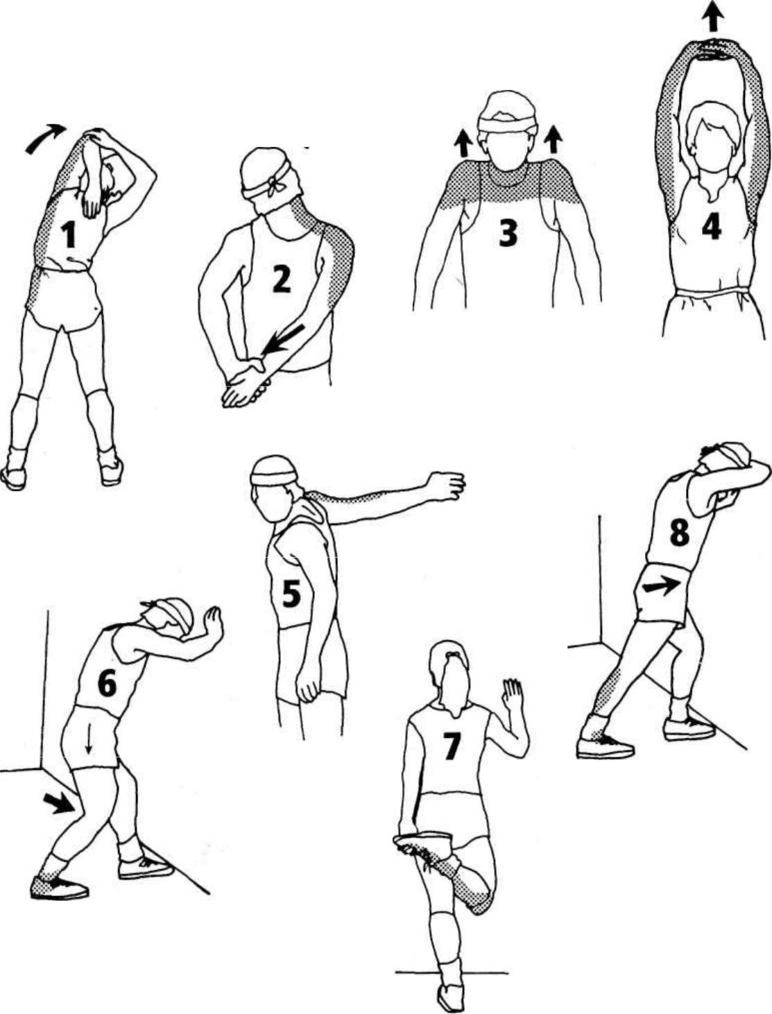 Разминка перед тренировкой дома - как разогреться перед занятиями спортом