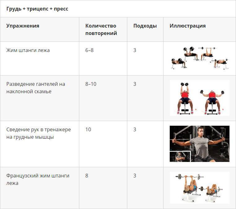Программа тренировок для набора мышечной массы для начинающих
