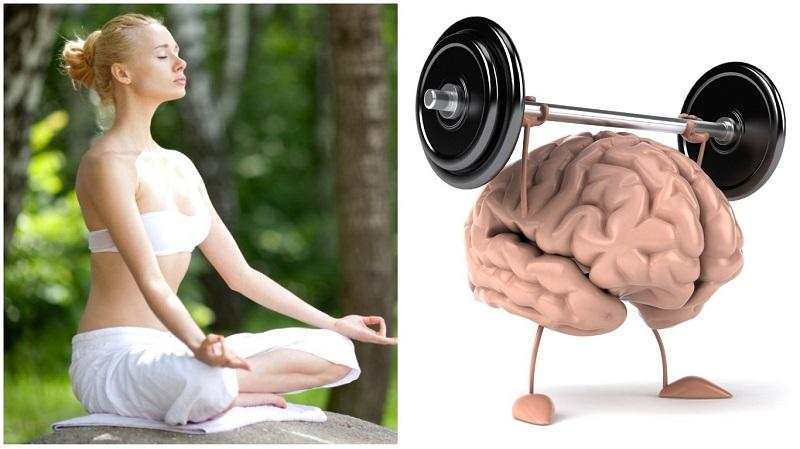 Тренировки перестраивают мозг, повышая устойчивость к стрессу - storm24.media