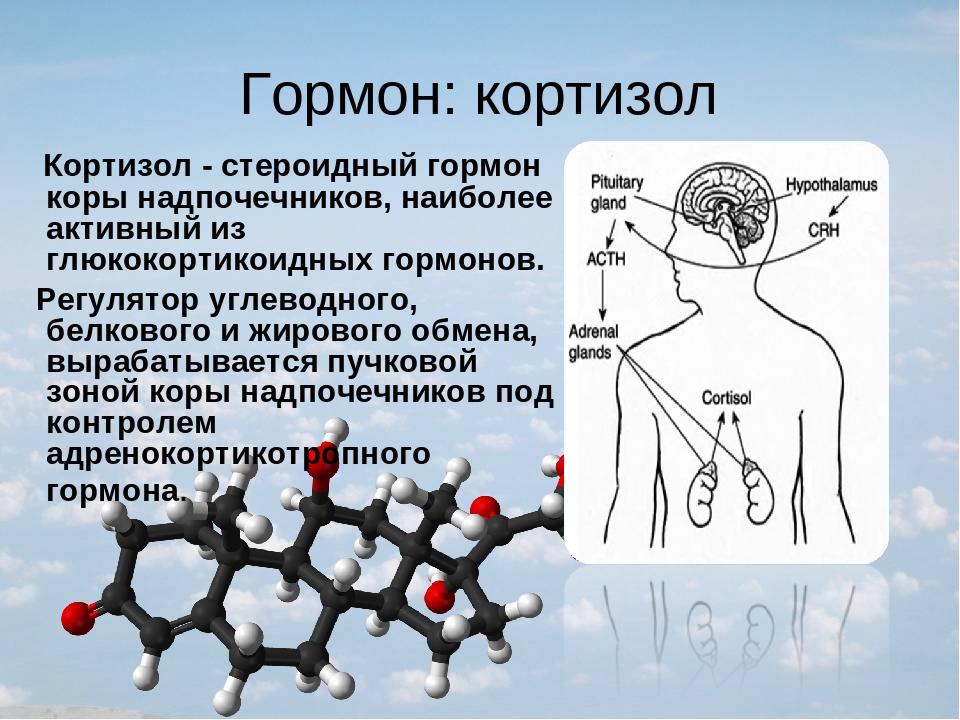 Симптомы и последствия повышения гормона стресса кортизола