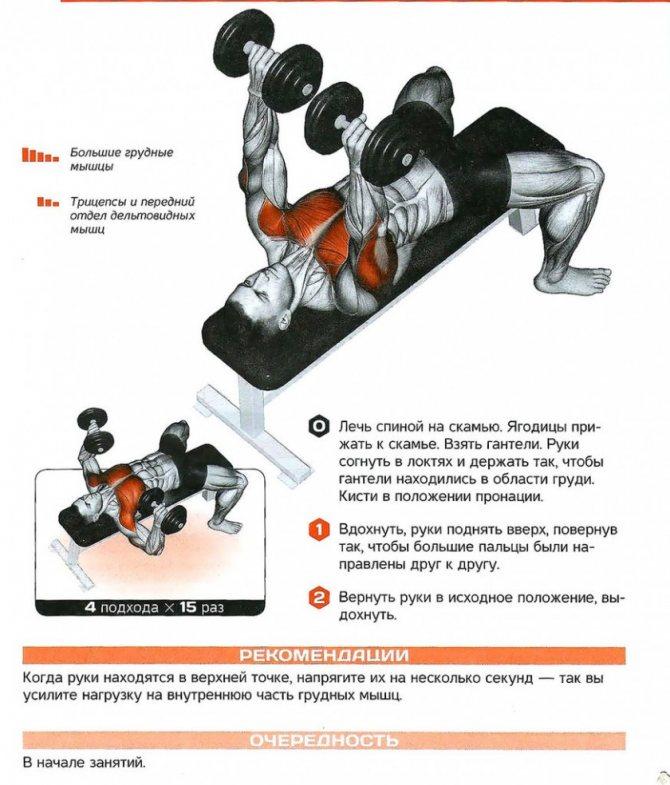 Как накачать жилистые мышцы: 12 шагов