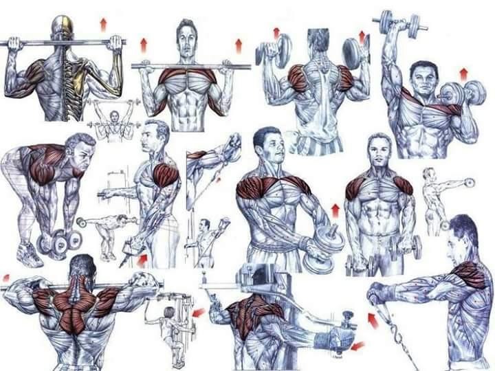 Объёмный тренинг, 12 суперсетов для рук