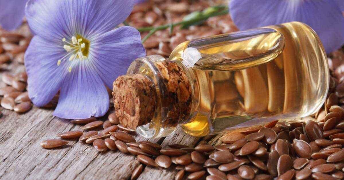 Польза семян льна для организма, и вред от его применения