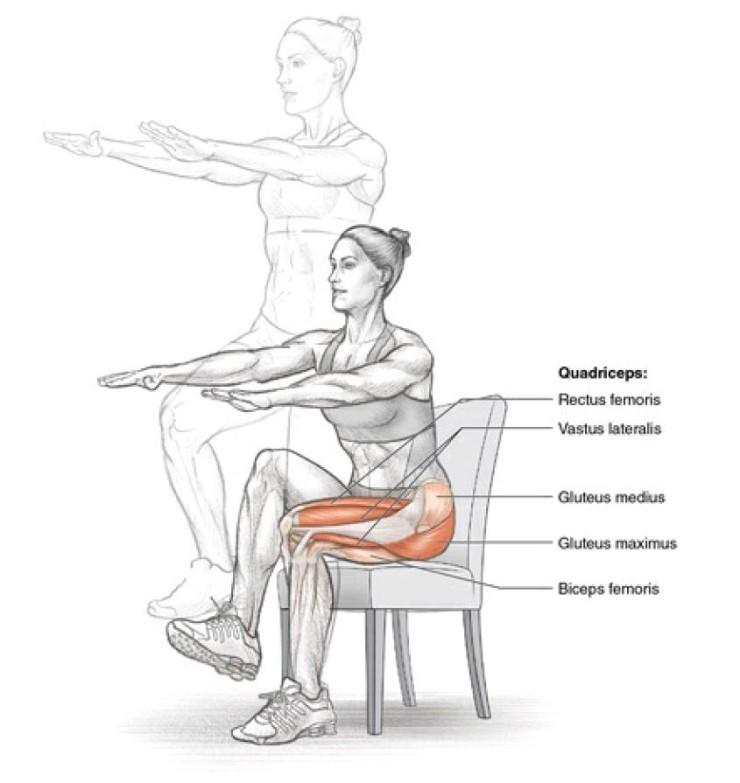 Упражнения стульчик у стены - техника выполнения, польза и вред