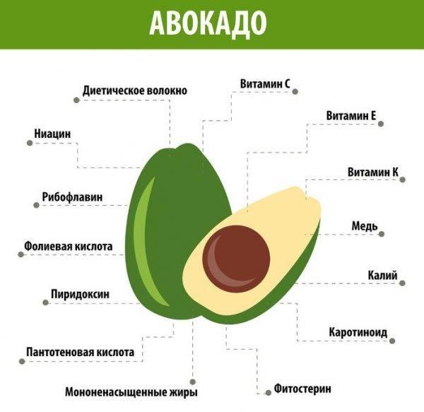 Авокадо — его полезные свойства, применение и какие есть противопоказания