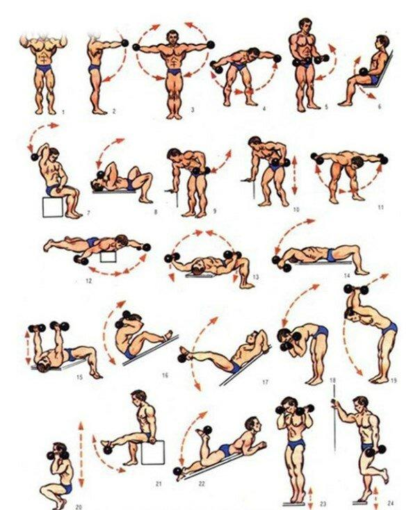 Упражнения и программа тренировок дома для мужчин без инвентаря на массу и похудение
