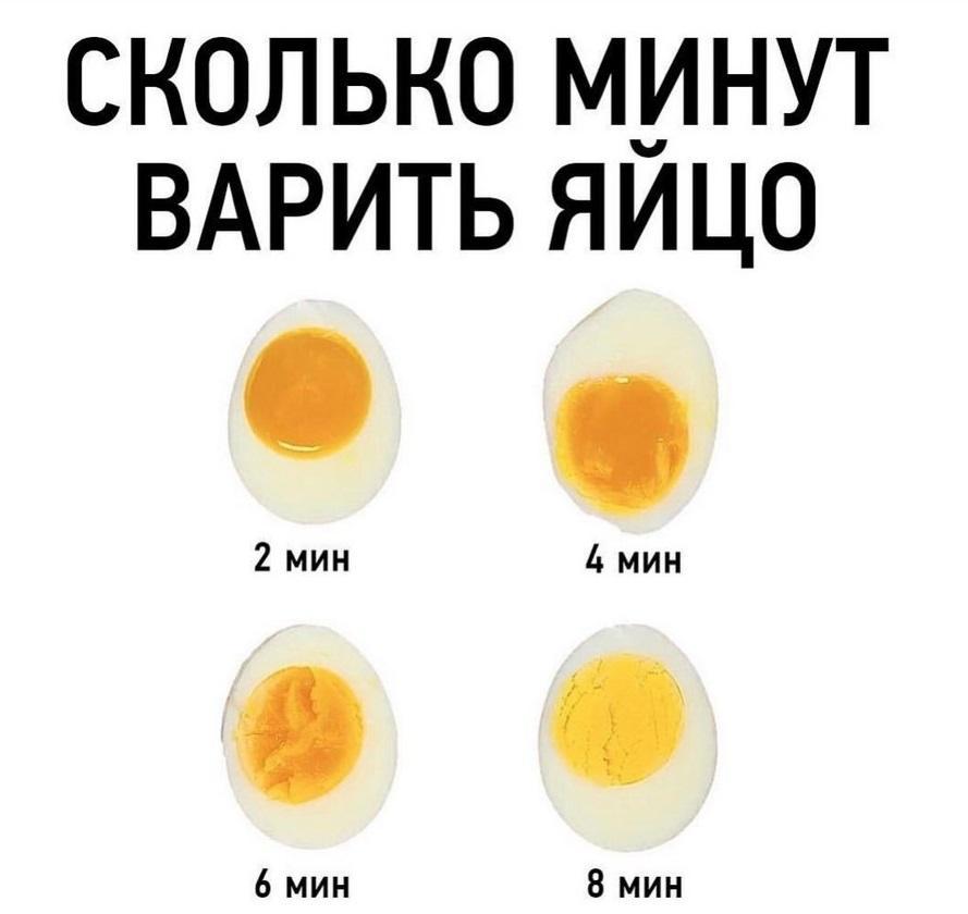 Описание полезных свойств яиц