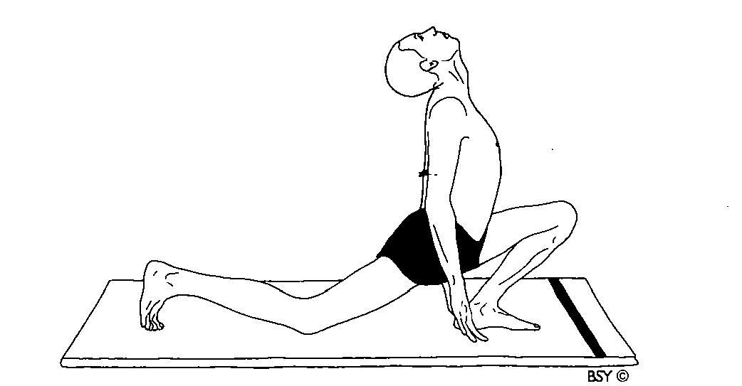 Анатомия подвздошно- поясничной мышцы: начало, прикрепление, иннервация, функции и фото