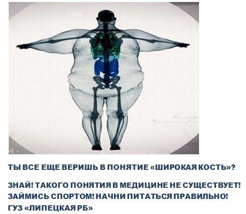 """""""у меня кость широкая"""": что говорят ученые о плотности и весе костей – зожник """"у меня кость широкая"""": что говорят ученые о плотности и весе костей – зожник —как похудеть, накачать пресс, чем питаться и другие важные ответы."""