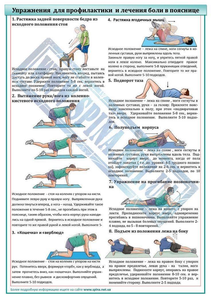 Лучшие упражнения при боли в спине и пояснице — домашняя программа