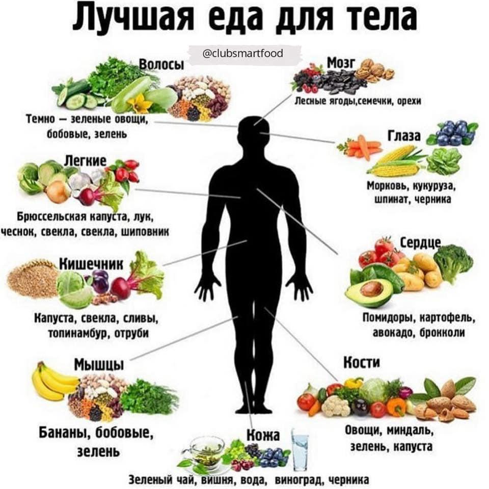 Таблица совместимости продуктов на правильном питании