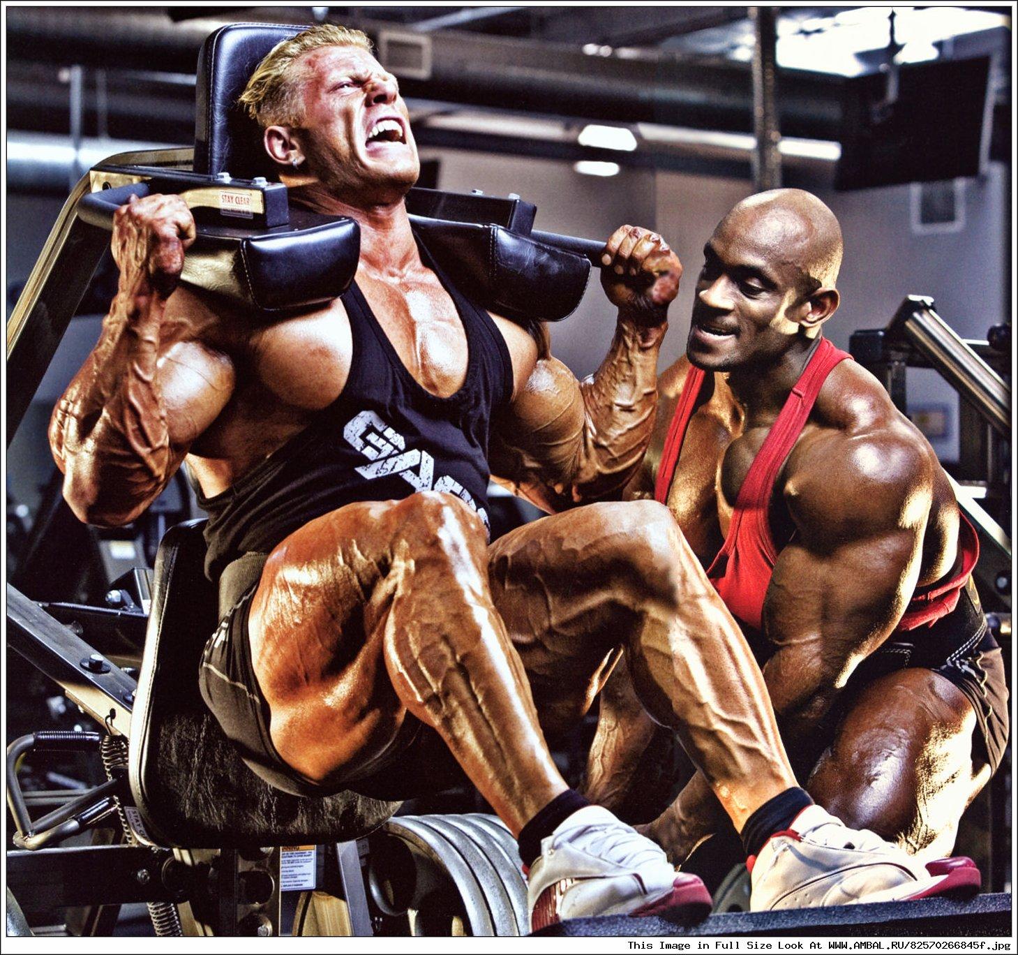 Бодибилдинг — современный силовой спорт