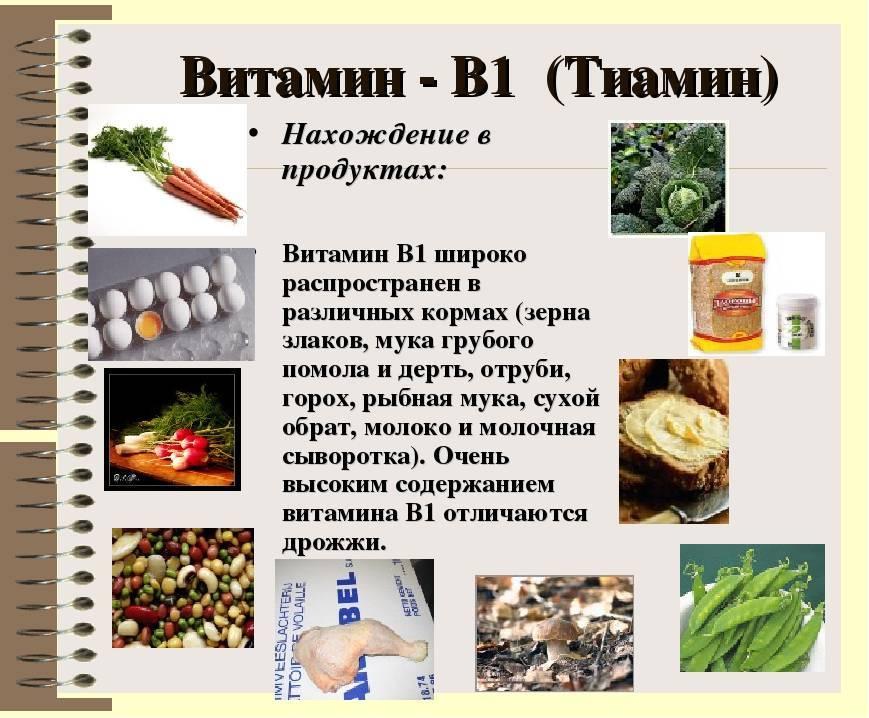 Витамин в 12 в таблетках – полная инструкция по применению