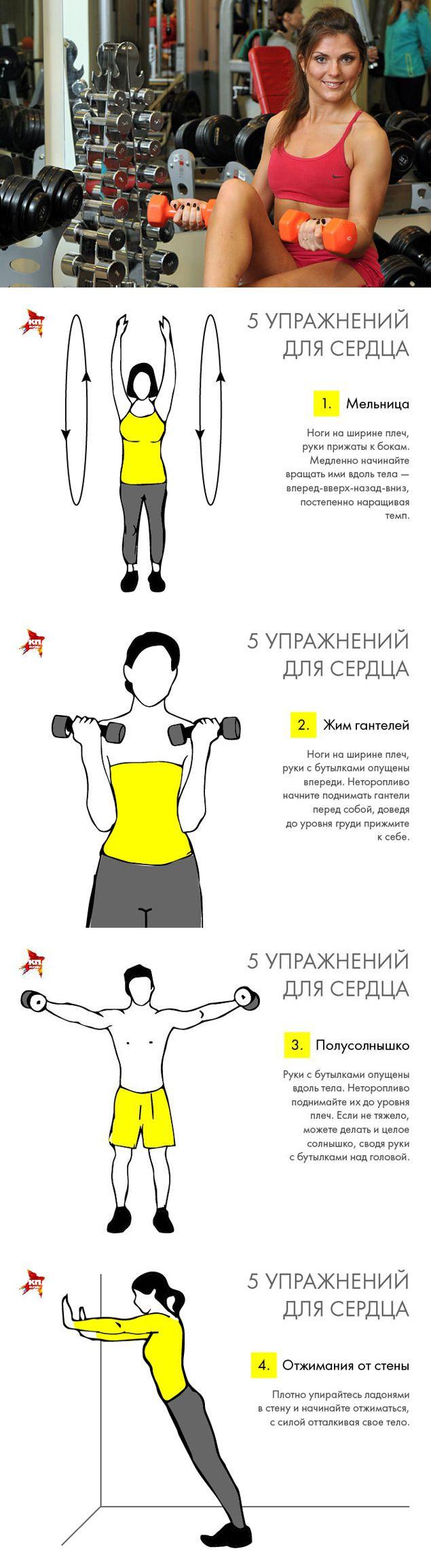 Как тренировать сердечную мышцу — сердце