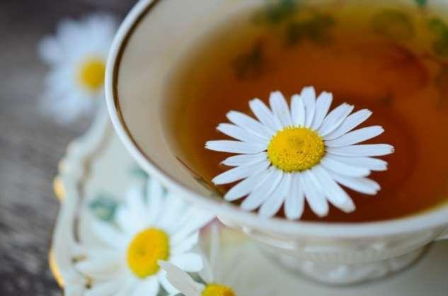 Ромашковый чай — польза и вред для женщин и мужчин, противопоказания