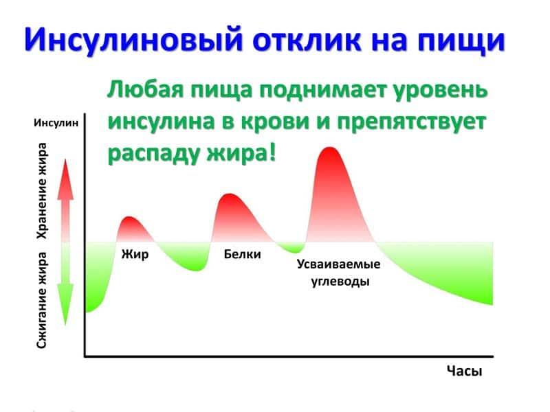 Инсулин в бодибилдинге: мощный и смертельно опасный.. механизм действия инсулина в спорте | promusculus.ru