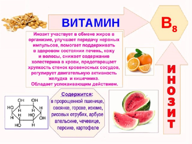 Витамин а(ретинол) - для чего нужен организму, норма, где содержится(список из 148 продуктов)