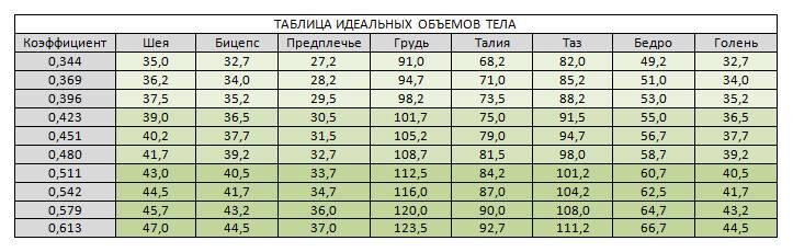 Пропорции в бодибилдинге таблица для мужчин - спорт и питание