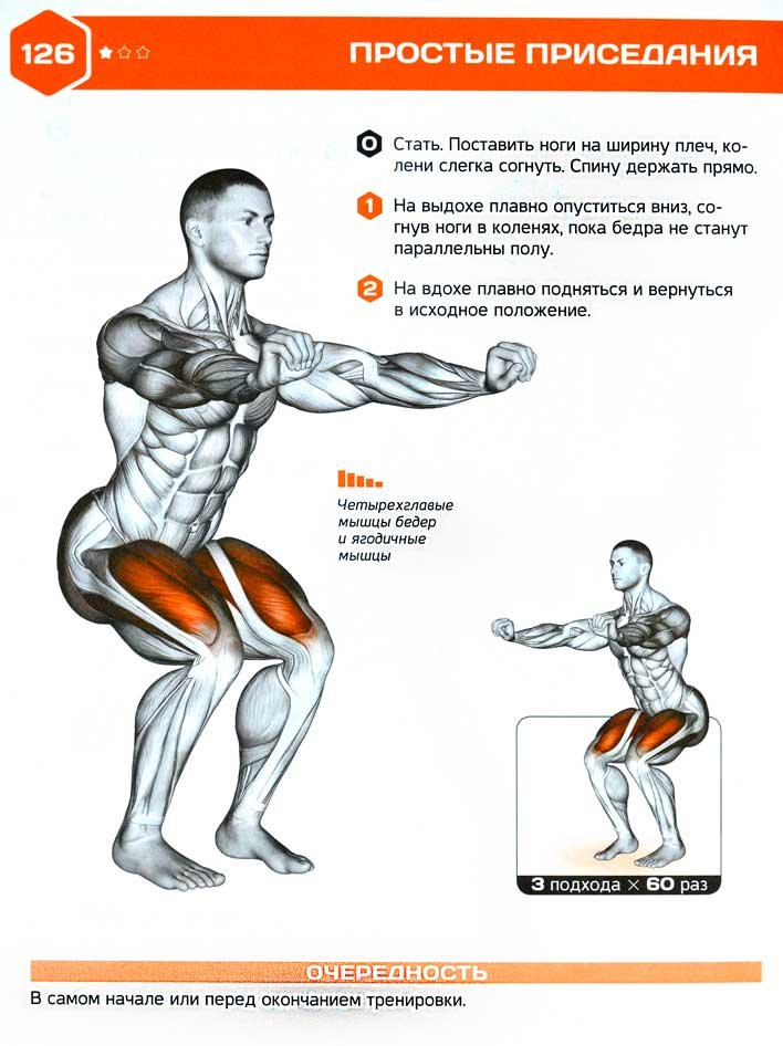 Как накачать мышцы рук в домашних условиях: лучших упражнений для мужчин