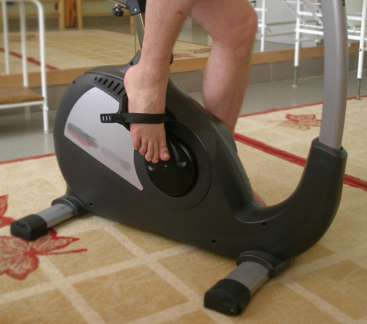 Велотренажер: какой лучше выбрать для дома, как правильно заниматься и какие мышцы работают