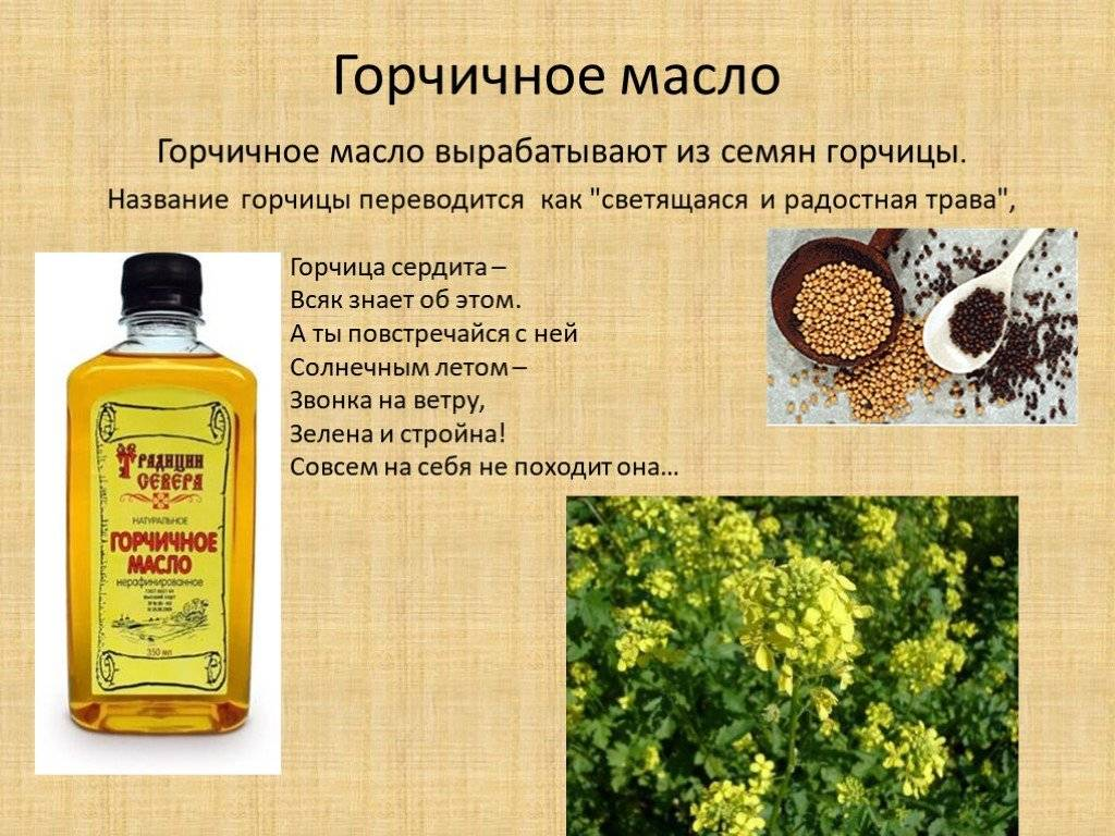 Какое растительное масло лучше и полезнее для здоровья? | любящая мама