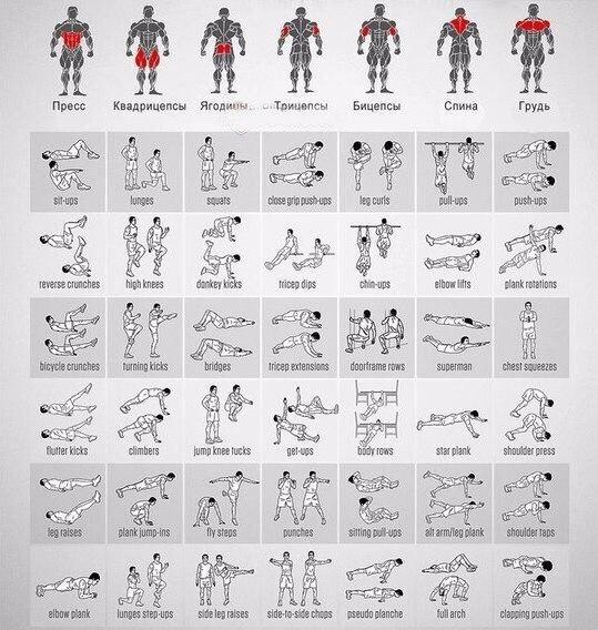«стульчик» у стены: чем полезно упражнение и как его выполнять