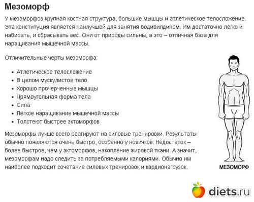 Питание для мезоморфа для набора массы и похудения: рацион и программа