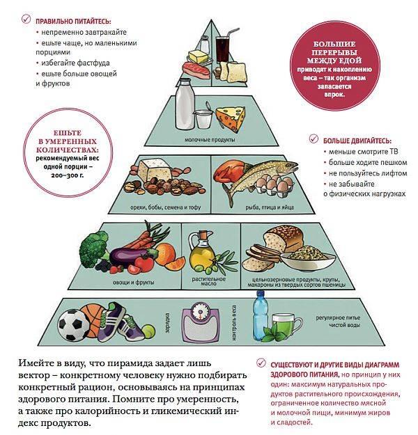 Полезное питание, вредное питание,вред диет, горький шоколад
