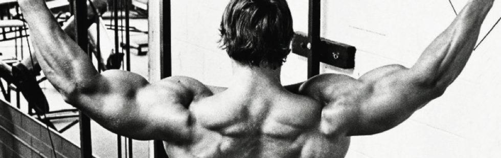 Тренировки арнольда шварценеггера | power-body.ru