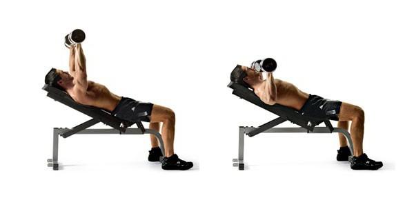 Разводка гантелей лежа на горизонтальной и наклонной скамье под углом 30, 45 градусов: техника, видео