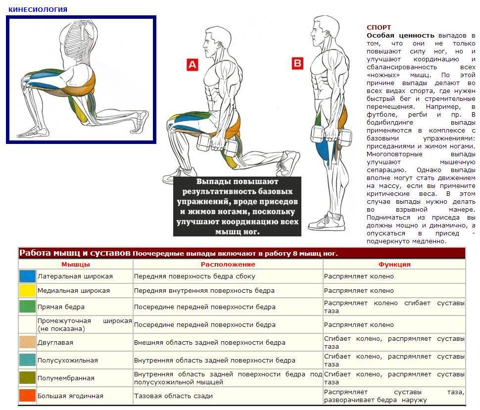 Приседания пистолетиком (на одной ноге) техника, вариации и польза