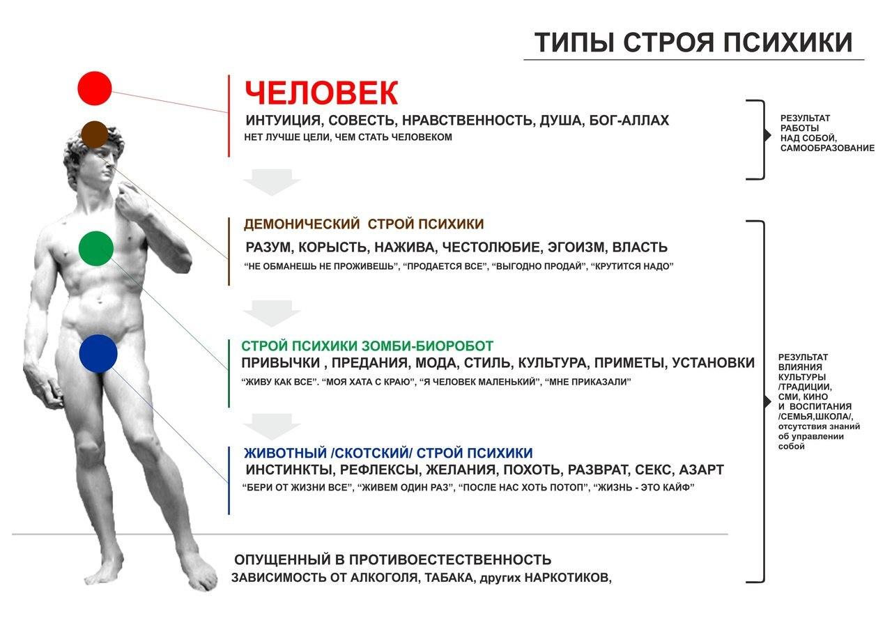 Инстинкт - это что? природа инстинктов :: syl.ru