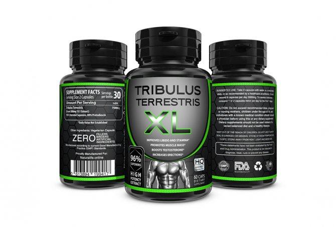 Трибулус – как принимать для повышения потенции и тестостерона?