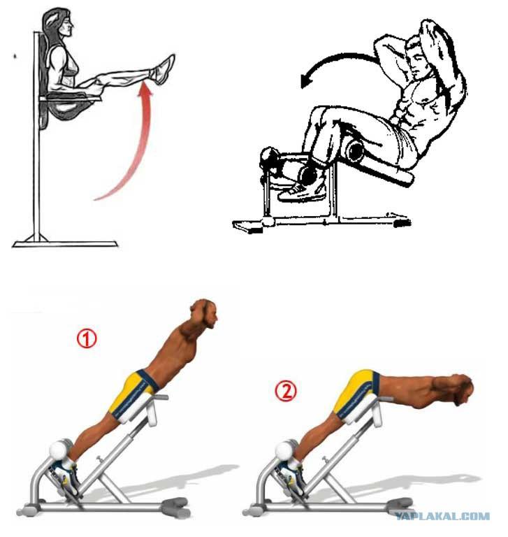 Упражнения для пресса в домашних условиях для мужчин и женщин