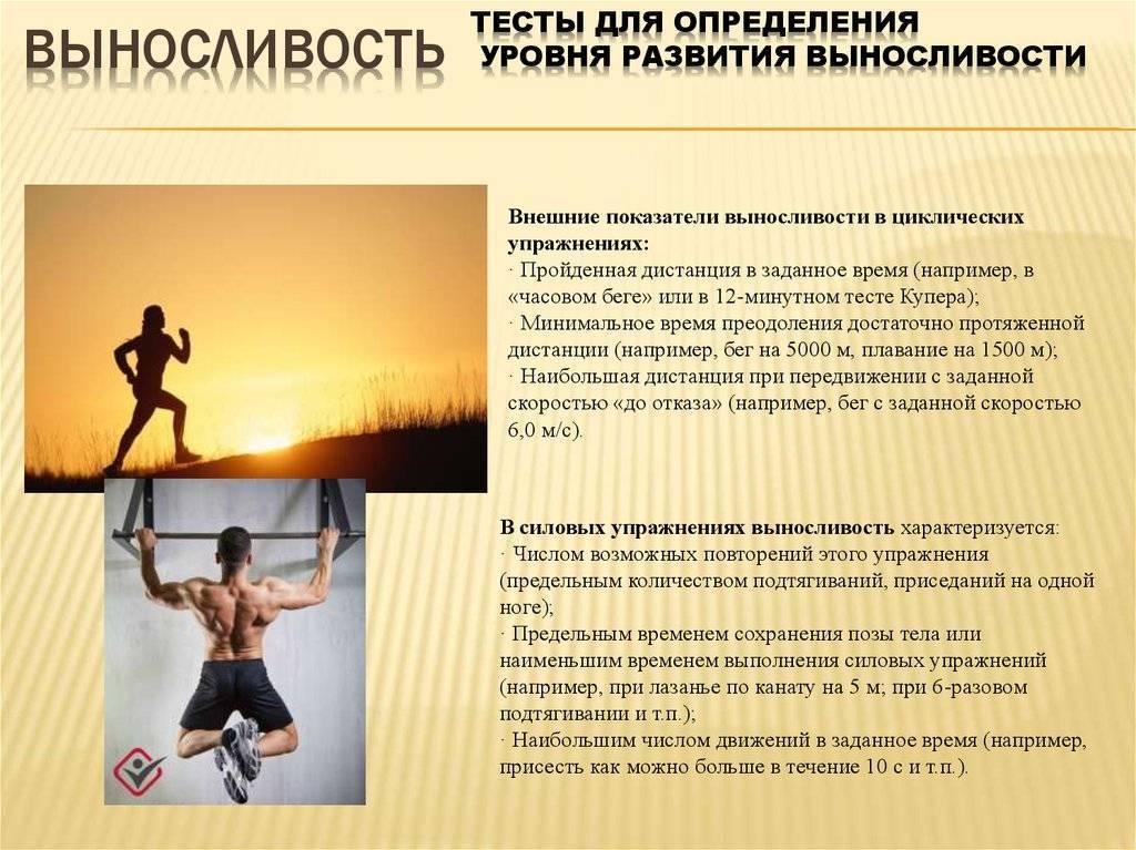Взрывная сила – что это такое, лучшие упражнения для развития