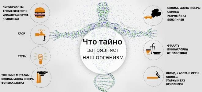 Очищение организма от шлаков: миф или реальность?