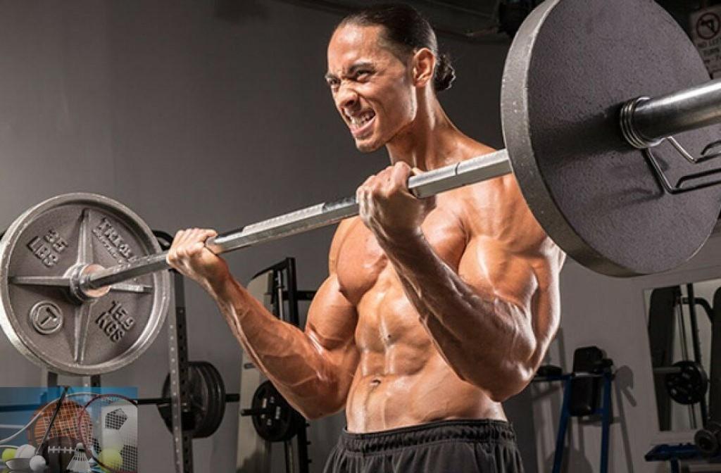 Свободные веса при тренировках ✔ что это и как использовать при тренировках
