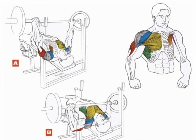 Как убрать жир с грудных мышц у мужчин дома упражнения