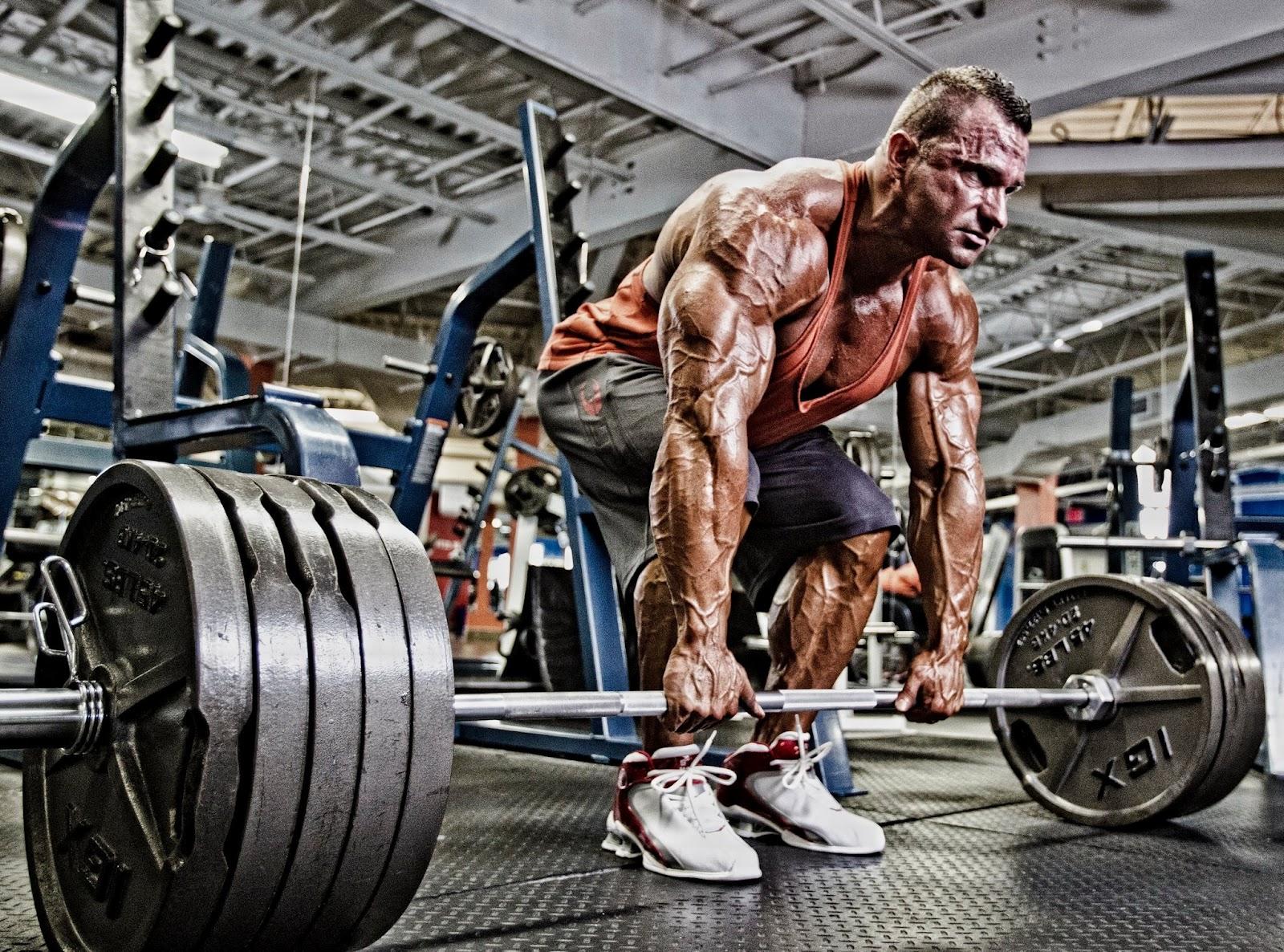 Становая тяга - программа тренировки рассчитанная на 12 недель